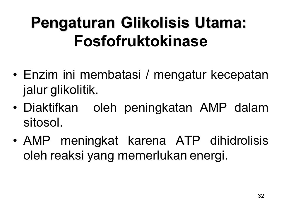 Pengaturan Glikolisis Utama: Fosfofruktokinase