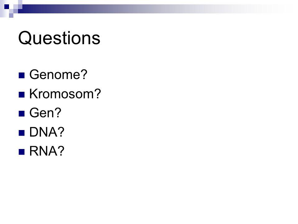Questions Genome Kromosom Gen DNA RNA