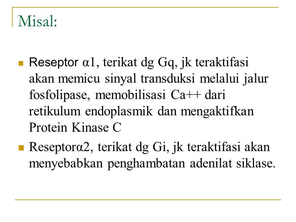 Misal:
