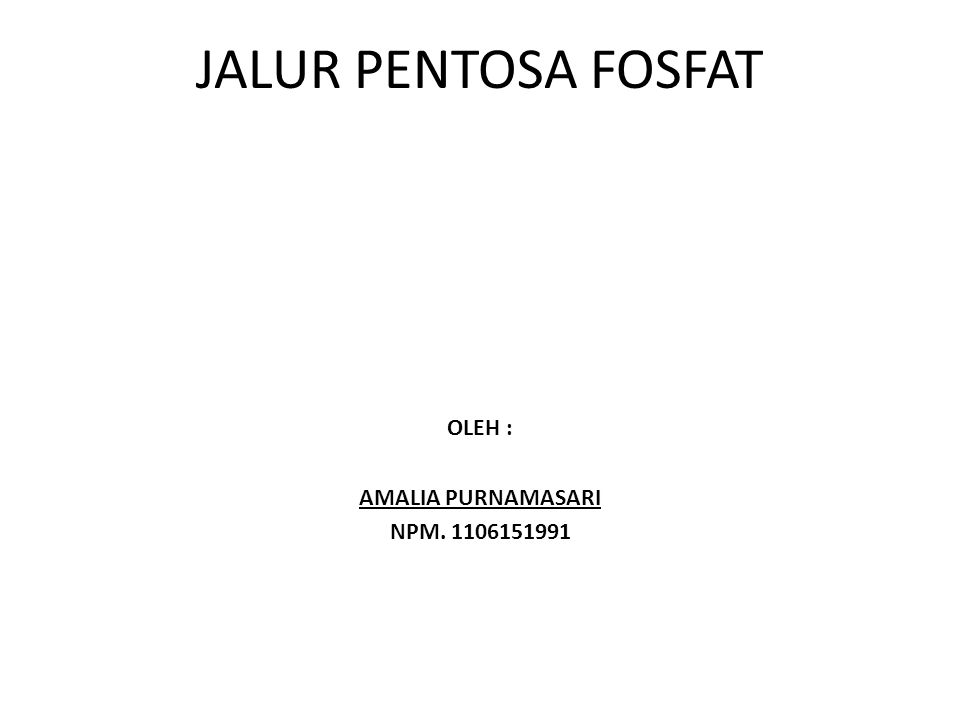 OLEH : AMALIA PURNAMASARI NPM. 1106151991