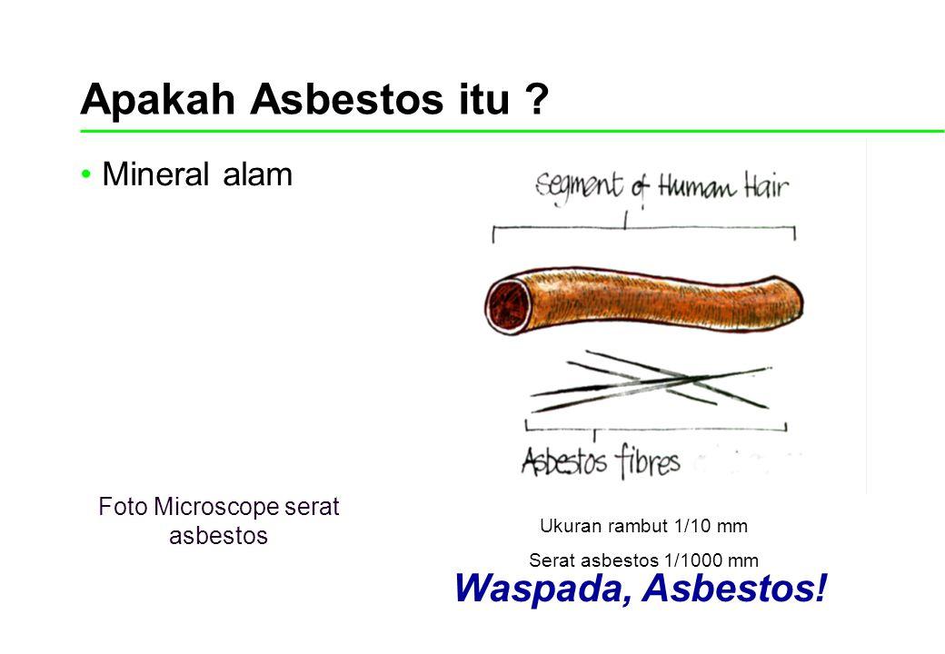 Foto Microscope serat asbestos