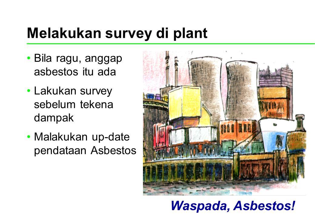 Melakukan survey di plant