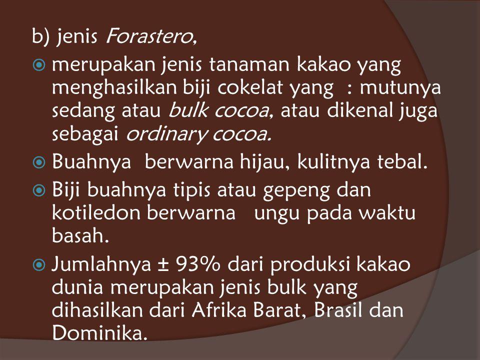 b) jenis Forastero,