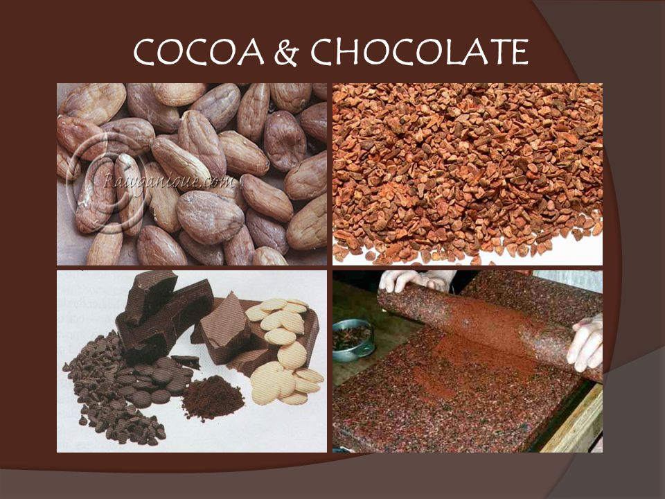 COCOA & CHOCOLATE