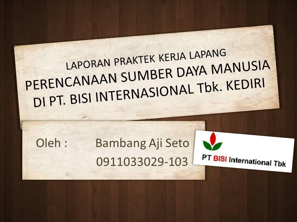 Oleh : Bambang Aji Seto 0911033029-103