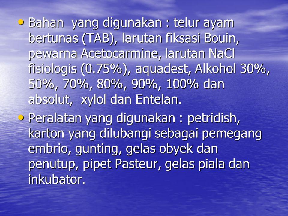 Bahan yang digunakan : telur ayam bertunas (TAB), larutan fiksasi Bouin, pewarna Acetocarmine, larutan NaCl fisiologis (0.75%), aquadest, Alkohol 30%, 50%, 70%, 80%, 90%, 100% dan absolut, xylol dan Entelan.