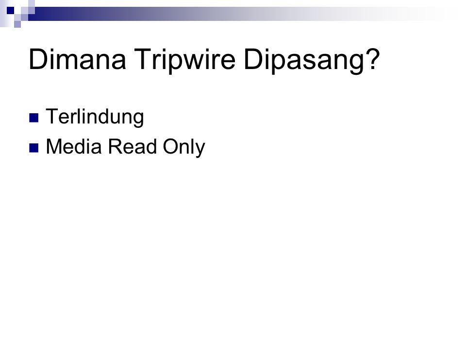 Dimana Tripwire Dipasang