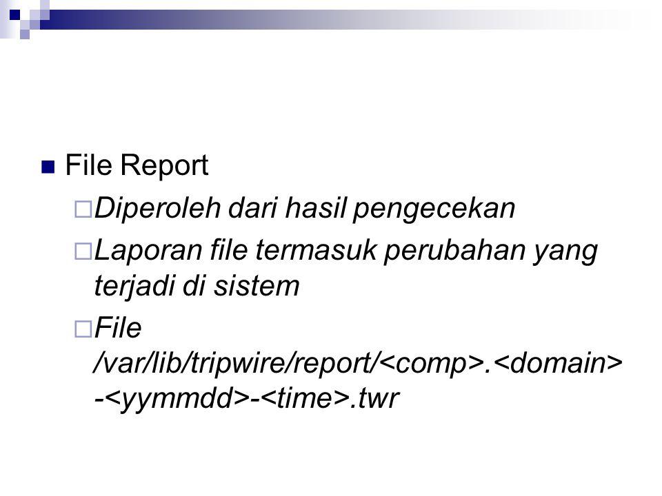 File Report Diperoleh dari hasil pengecekan. Laporan file termasuk perubahan yang terjadi di sistem.