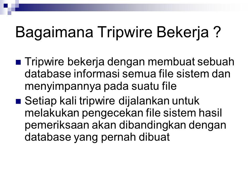 Bagaimana Tripwire Bekerja