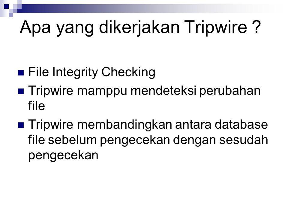 Apa yang dikerjakan Tripwire