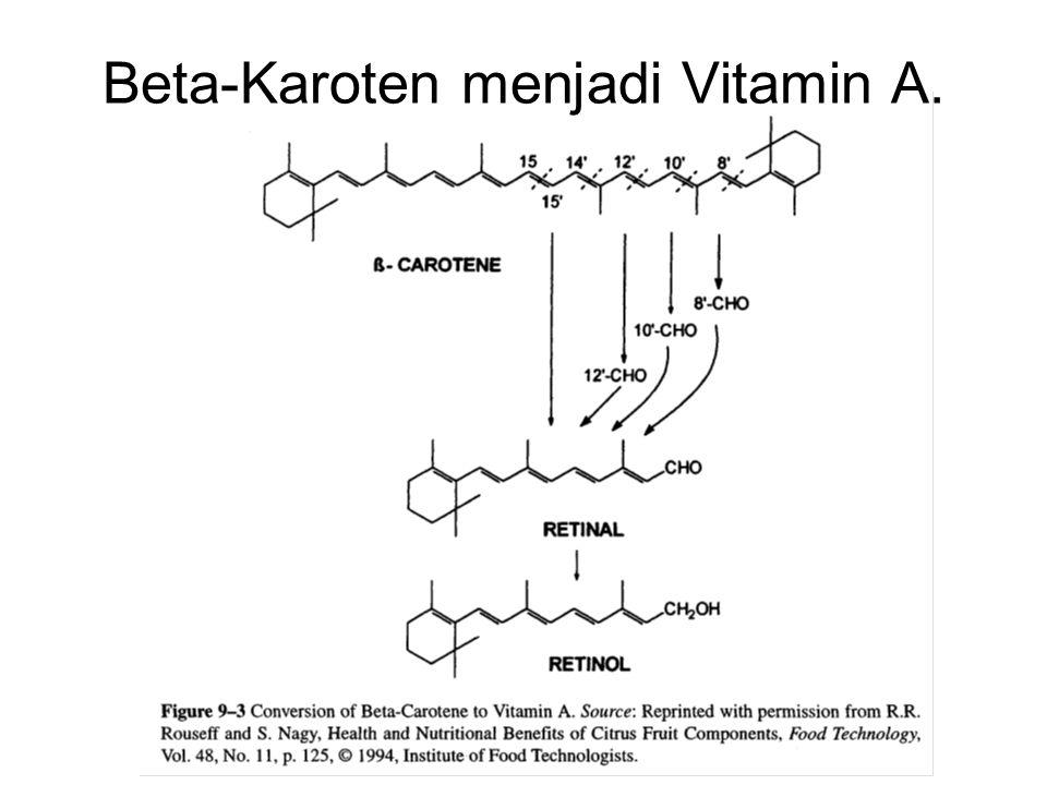 Beta-Karoten menjadi Vitamin A.