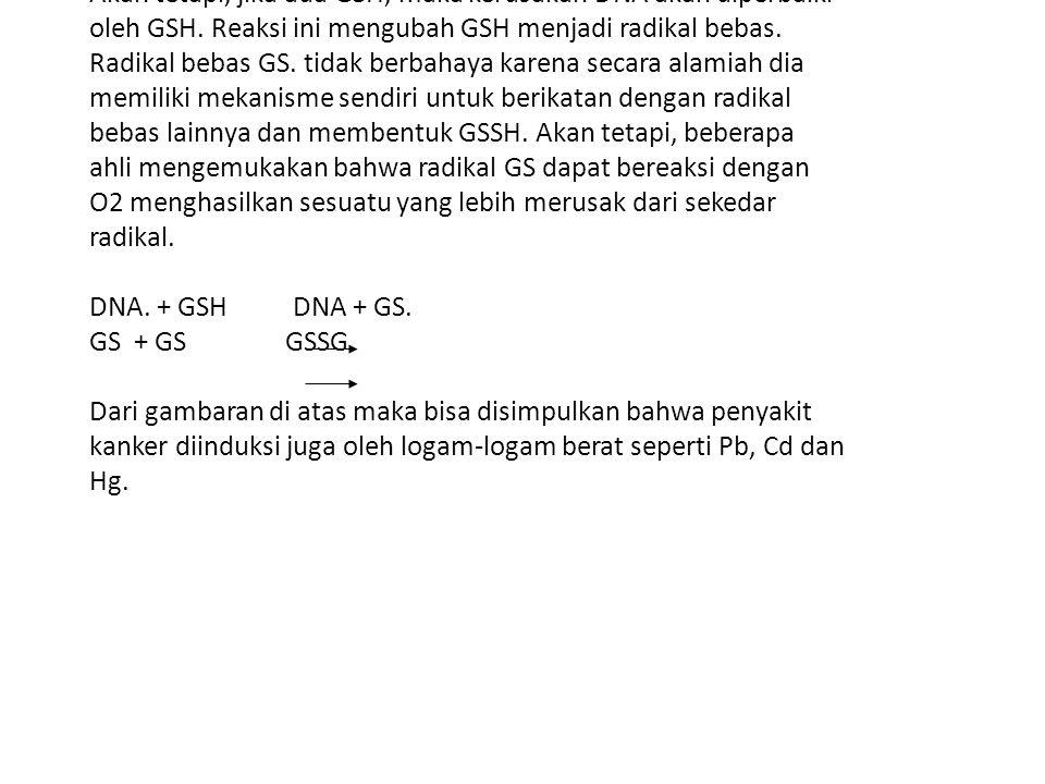 Akan tetapi, jika ada GSH, maka kerusakan DNA akan diperbaiki oleh GSH