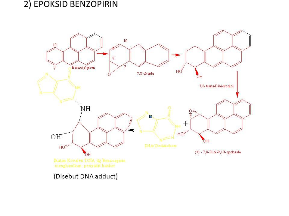 2) EPOKSID BENZOPIRIN (Disebut DNA adduct)