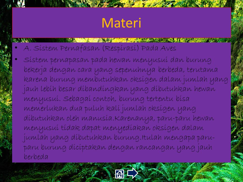 Materi A. Sistem Pernafasan (Respirasi) Pada Aves