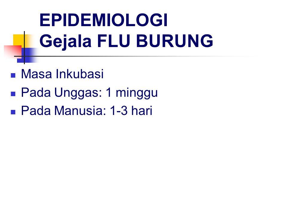 EPIDEMIOLOGI Gejala FLU BURUNG