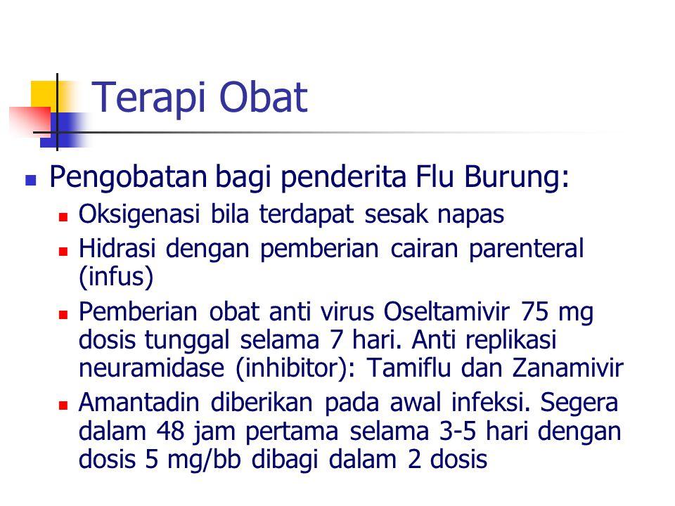 Terapi Obat Pengobatan bagi penderita Flu Burung: