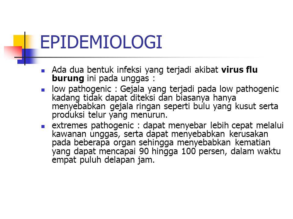 EPIDEMIOLOGI Ada dua bentuk infeksi yang terjadi akibat virus flu burung ini pada unggas :