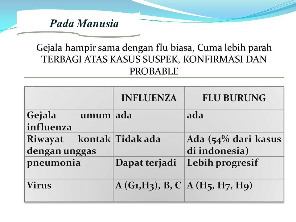 2. Pada Manusia Gejala hampir sama dengan flu biasa, Cuma lebih parah