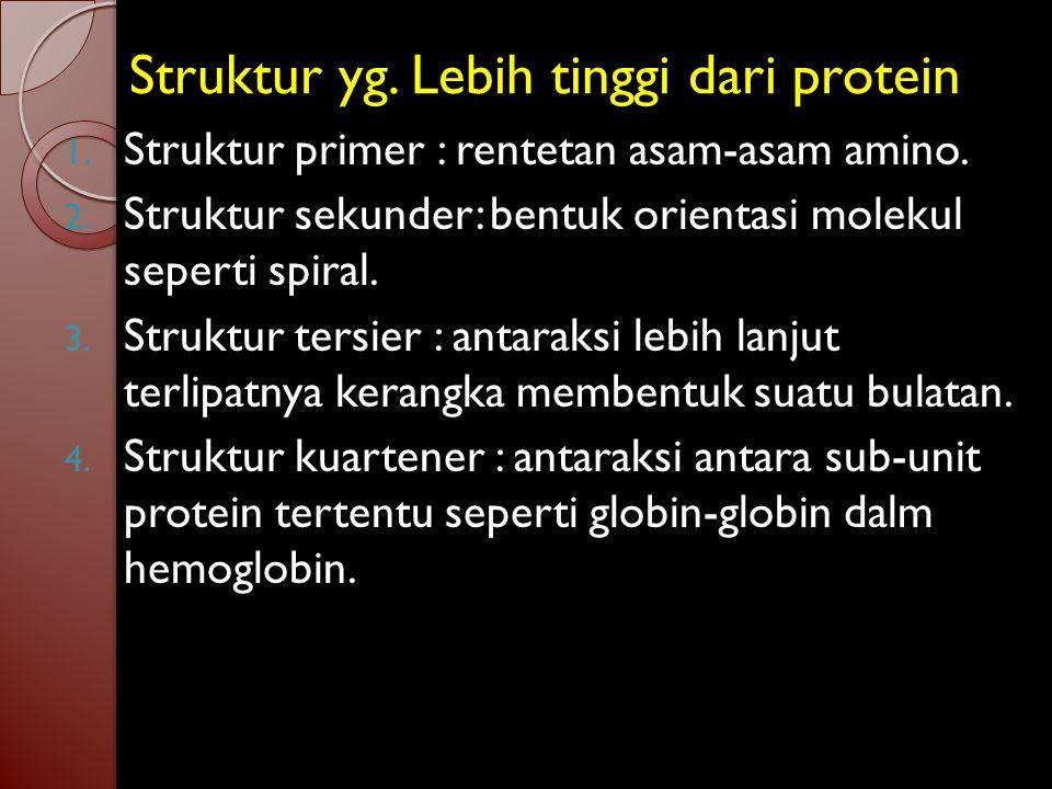 Struktur yg. Lebih tinggi dari protein