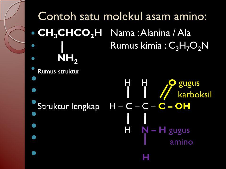 Contoh satu molekul asam amino: