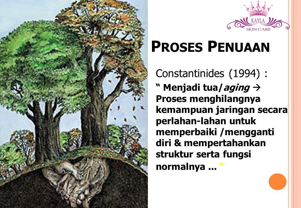 Proses Penuaan Constantinides (1994) :
