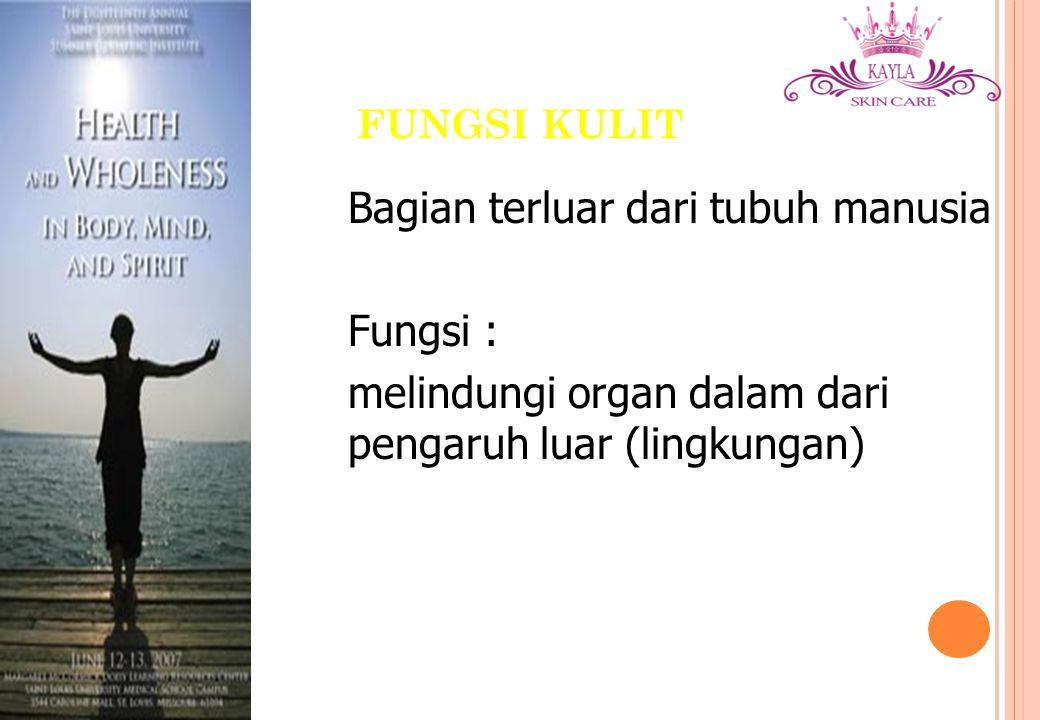 Bagian terluar dari tubuh manusia Fungsi :