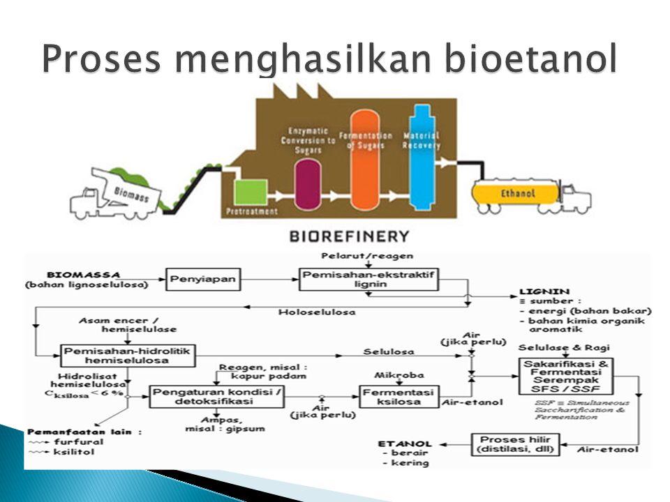 Proses menghasilkan bioetanol