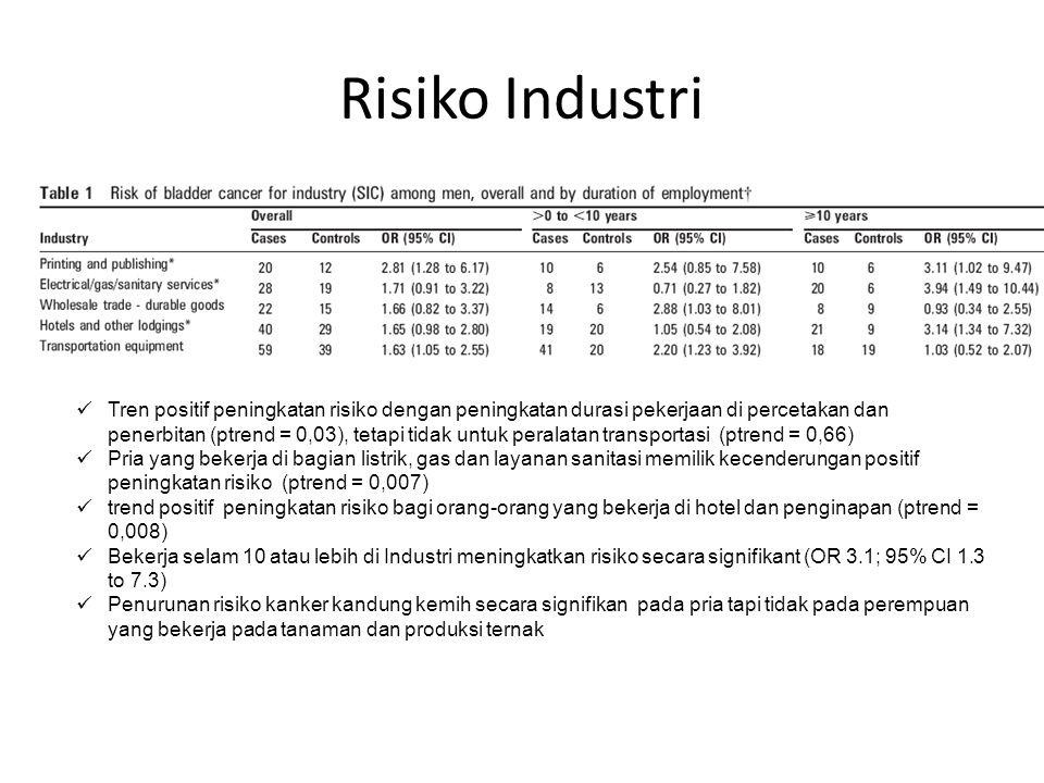 Risiko Industri