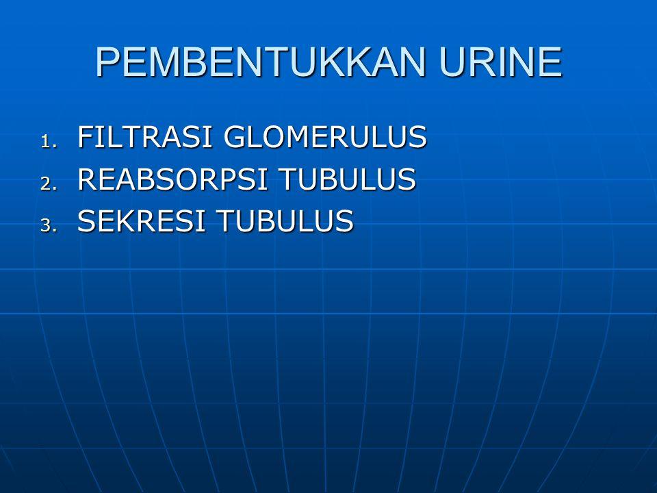 PEMBENTUKKAN URINE FILTRASI GLOMERULUS REABSORPSI TUBULUS
