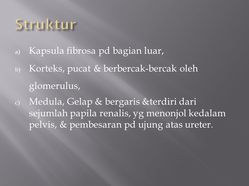 Struktur Kapsula fibrosa pd bagian luar,
