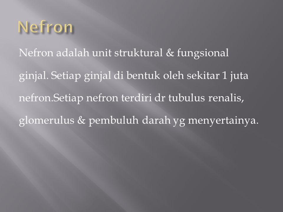 Nefron Nefron adalah unit struktural & fungsional