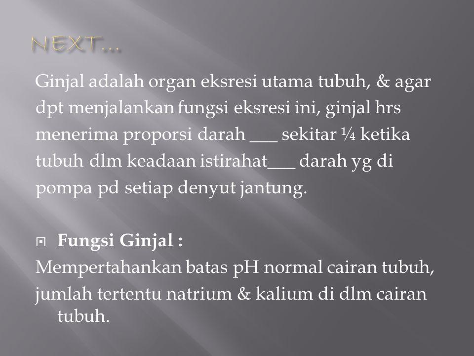 NEXT… Ginjal adalah organ eksresi utama tubuh, & agar