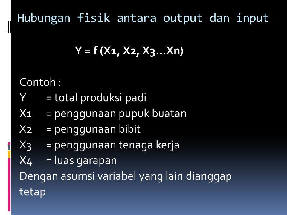 Hubungan fisik antara output dan input