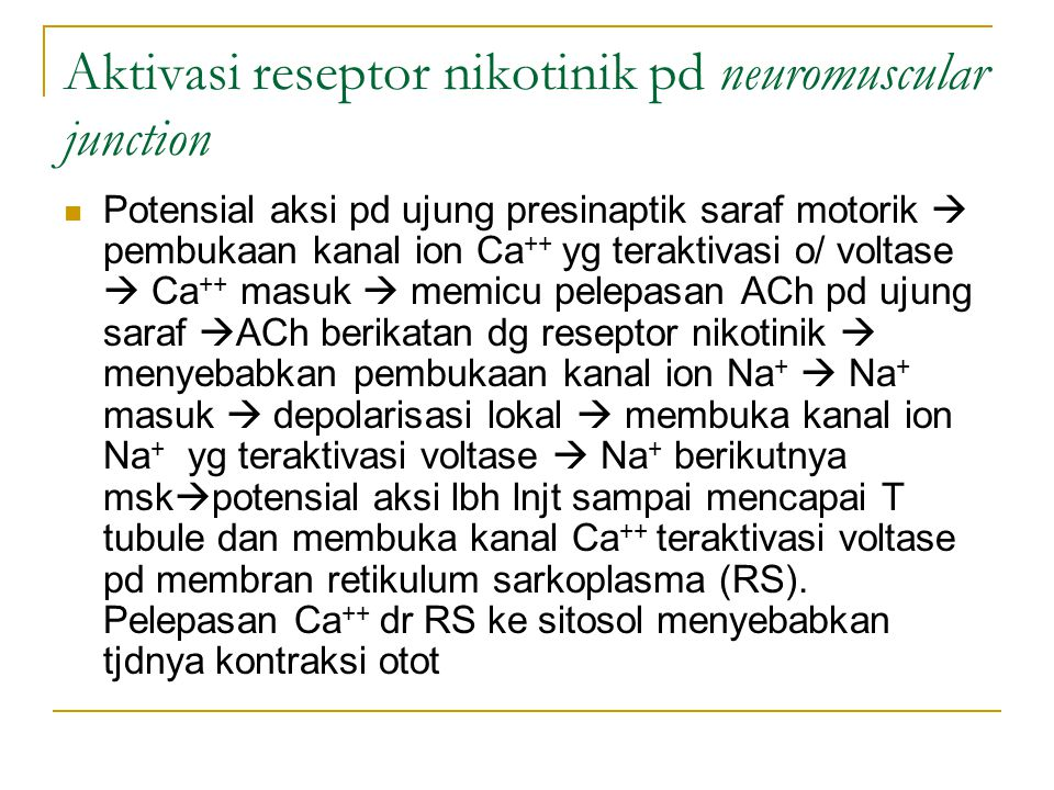 Aktivasi reseptor nikotinik pd neuromuscular junction
