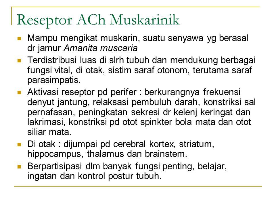 Reseptor ACh Muskarinik