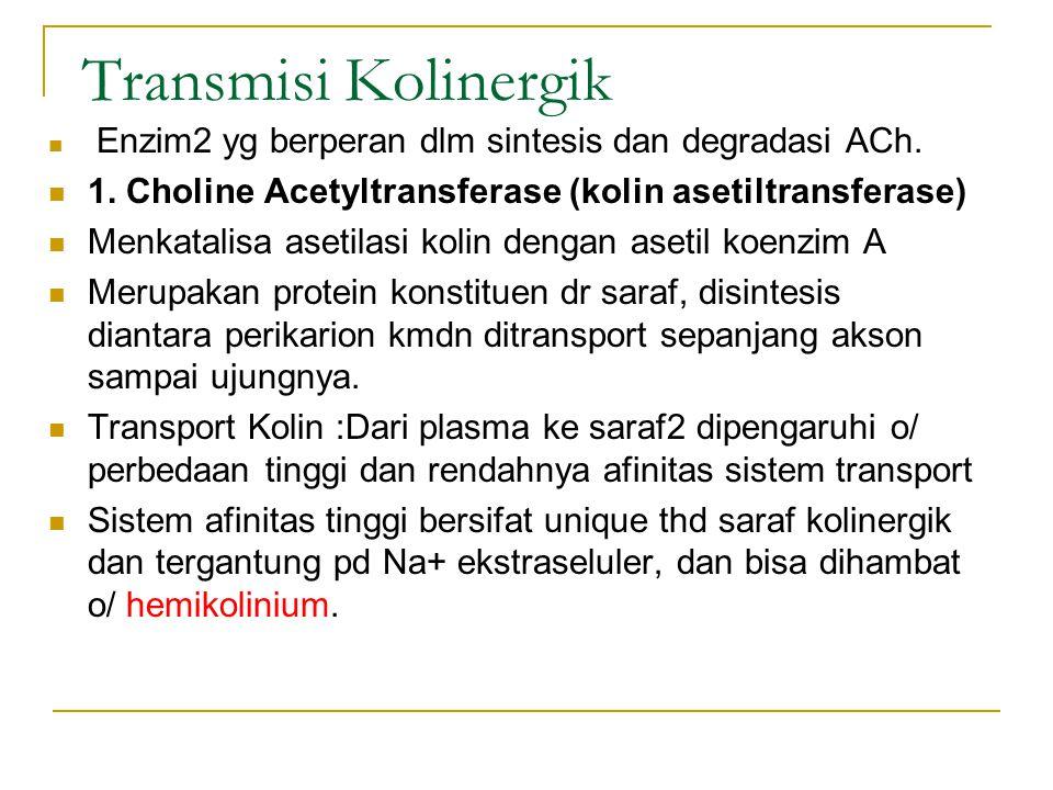 Transmisi Kolinergik Enzim2 yg berperan dlm sintesis dan degradasi ACh. 1. Choline Acetyltransferase (kolin asetiltransferase)