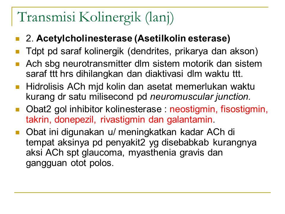 Transmisi Kolinergik (lanj)