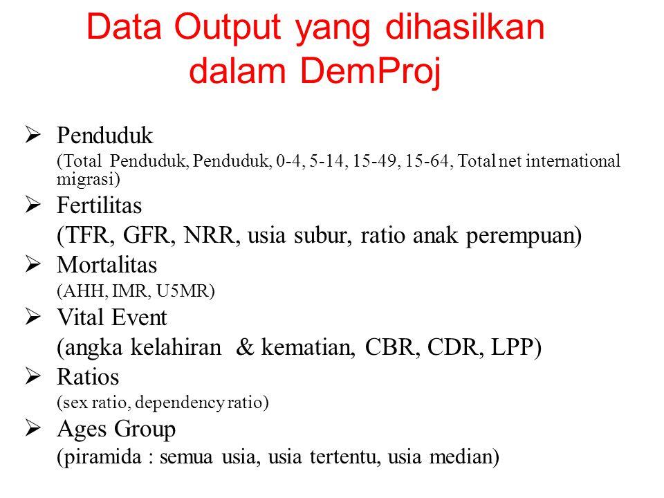 Data Output yang dihasilkan dalam DemProj