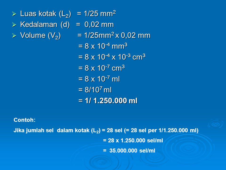 Luas kotak (L2) = 1/25 mm2 Kedalaman (d) = 0,02 mm
