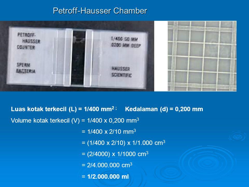 Petroff-Hausser Chamber