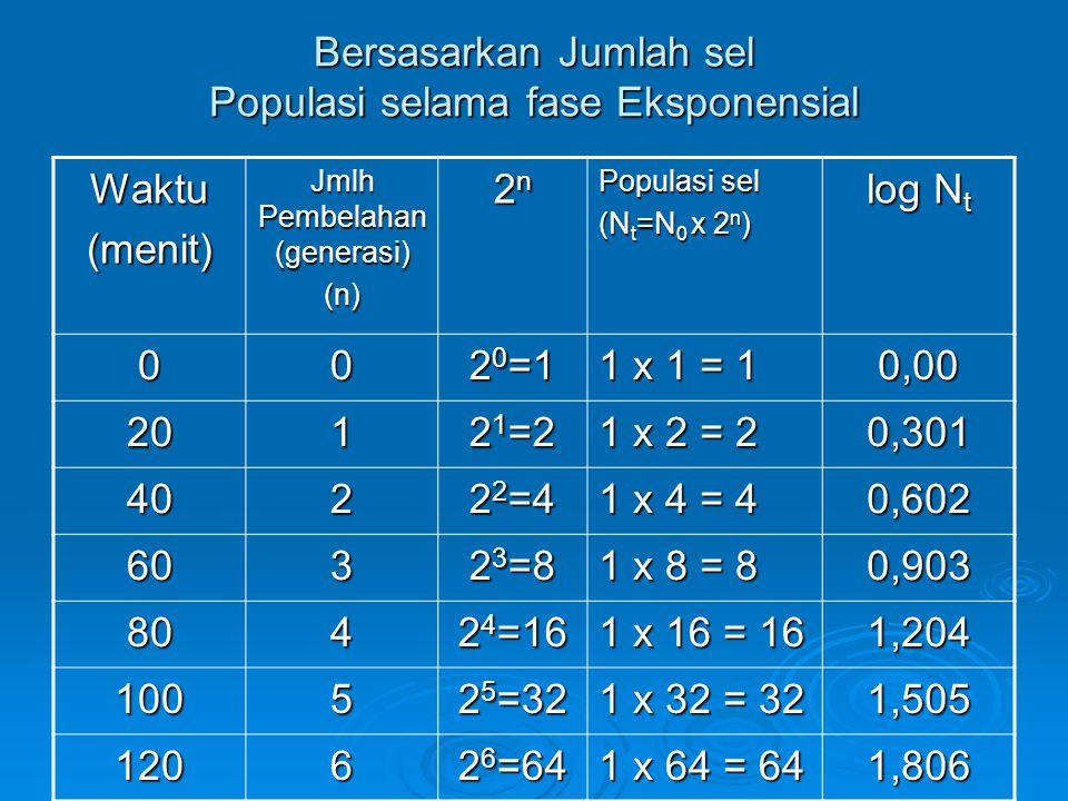 Bersasarkan Jumlah sel Populasi selama fase Eksponensial