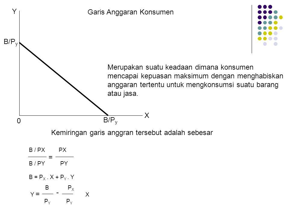 Garis Anggaran Konsumen