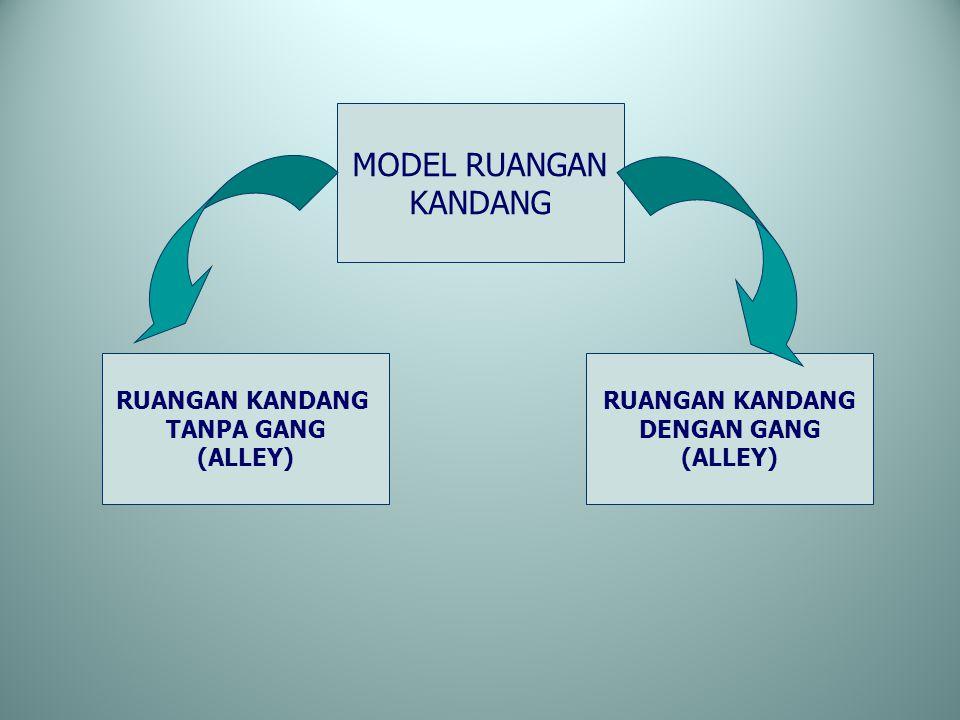 MODEL RUANGAN KANDANG RUANGAN KANDANG TANPA GANG (ALLEY)