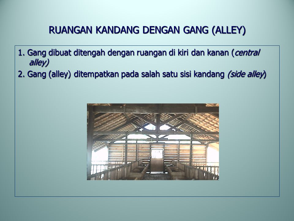 RUANGAN KANDANG DENGAN GANG (ALLEY)