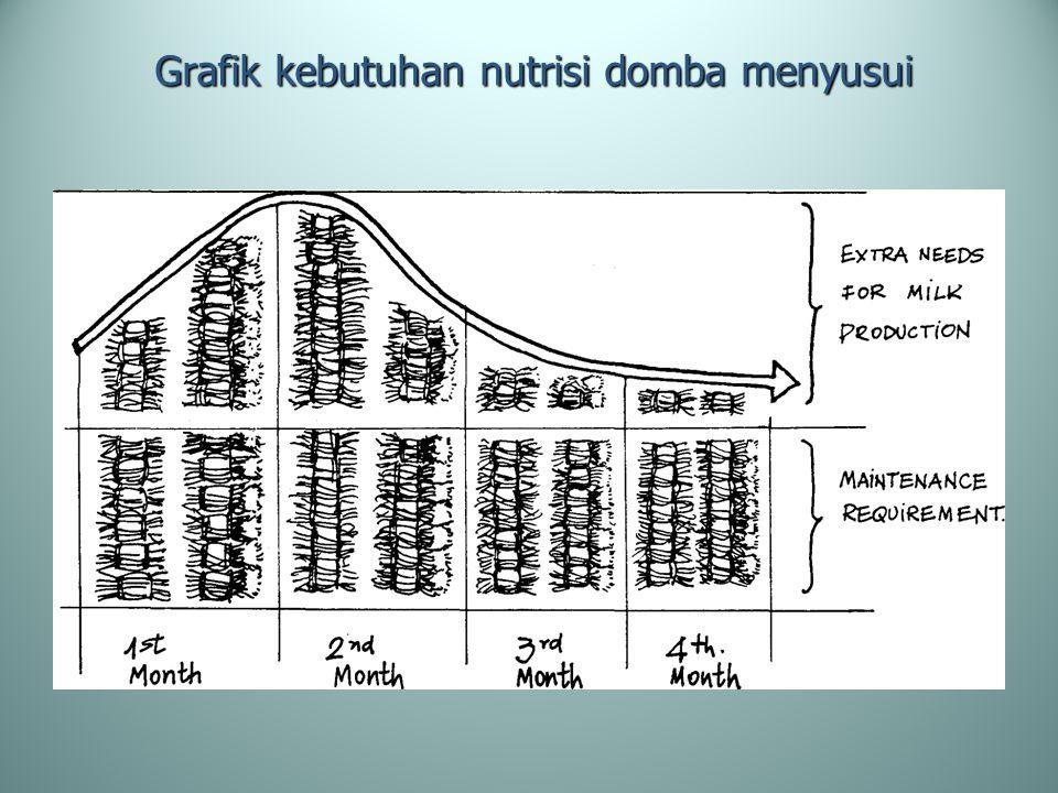 Grafik kebutuhan nutrisi domba menyusui
