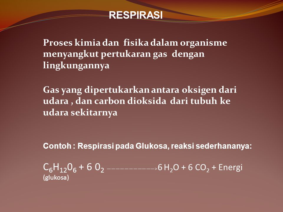 RESPIRASI Proses kimia dan fisika dalam organisme menyangkut pertukaran gas dengan lingkungannya.