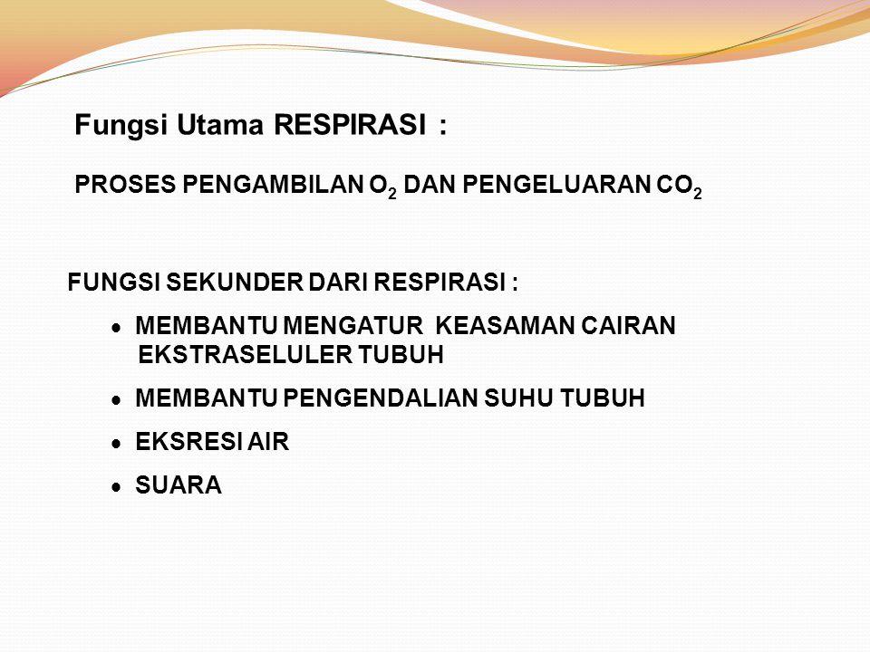 Fungsi Utama RESPIRASI :