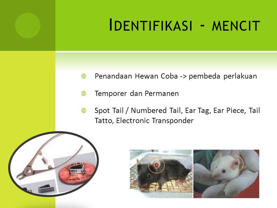 Identifikasi - mencit Penandaan Hewan Coba -> pembeda perlakuan