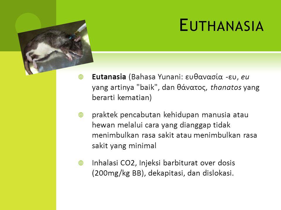 Euthanasia Eutanasia (Bahasa Yunani: ευθανασία -ευ, eu yang artinya baik , dan θάνατος, thanatos yang berarti kematian)