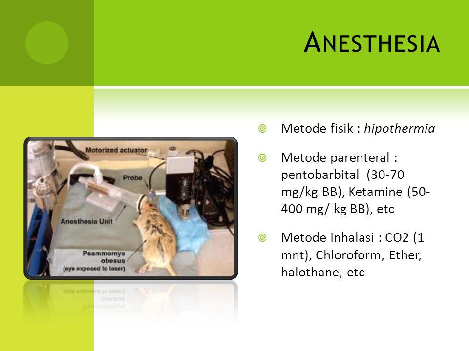 Anesthesia Metode fisik : hipothermia